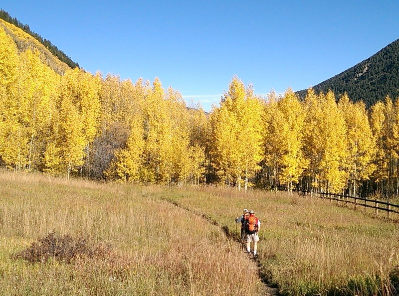 Be prepared for eye-popping displays of turning aspens in September