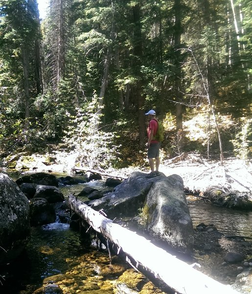 Lots of fun places to play on the creek.