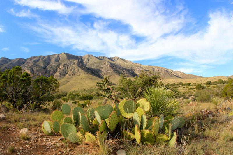Frijole Ridge mountains