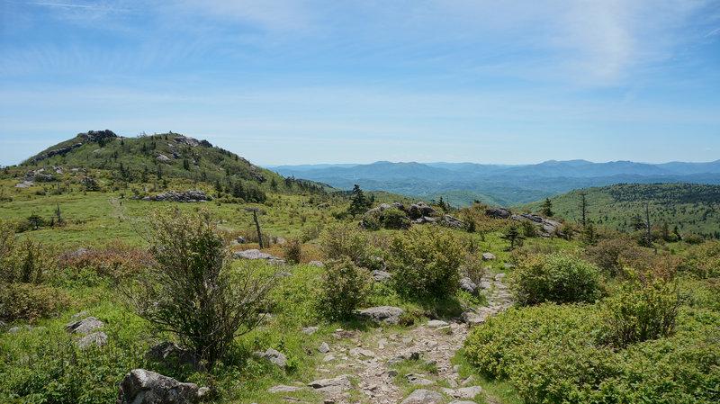 Near the Mt. Rogers summit.