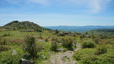 15dc17dbb Massie Gap to Mt Rogers Summit Out and Back Hiking Trail, Marion ...