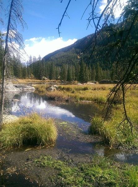 "Marshy ""lake"" along the Cross Creek Trail"