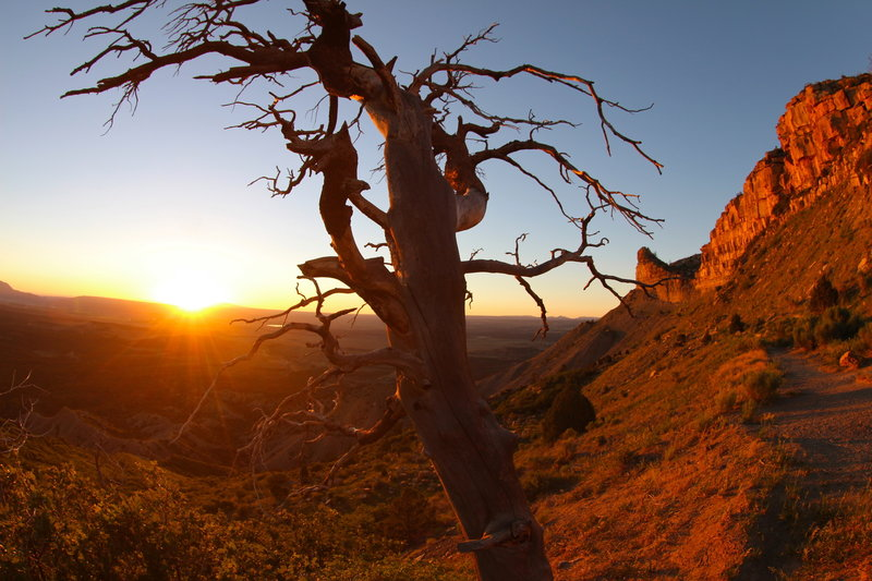 Sunset on the north slope of Mesa Verde