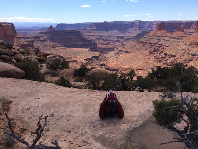 Stunning views of Canyonlands from the Twisted Tree trail