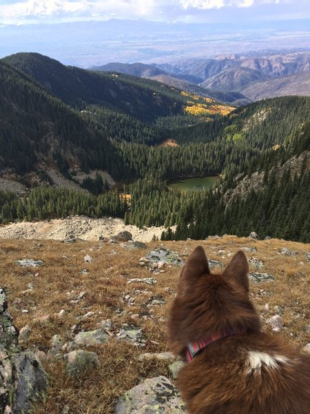 A lake, some colorful leaves and a summit.  Three good things to make a run memorable.