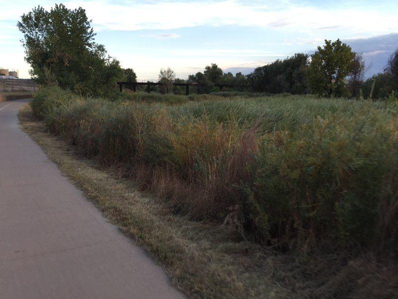Paved portion of the Sand Creek Trail.