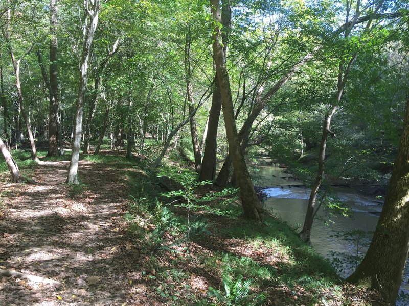 Scenic section of trail following Crabtree Creek.