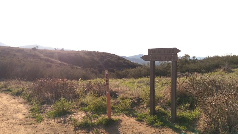 Yucaipa Regional Park trail junction.  From here, you leave the dirt road and follow the regional park trail.
