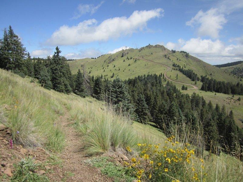 Looking toward La Mosca on Gooseberry Trail.