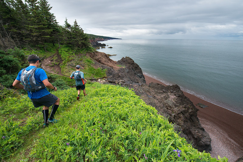 One of the many open sections looking out over the bay.  Cape Chignecto is in the distance.