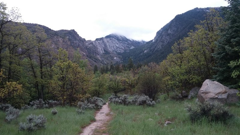 Side trail leading into Bell Canyon