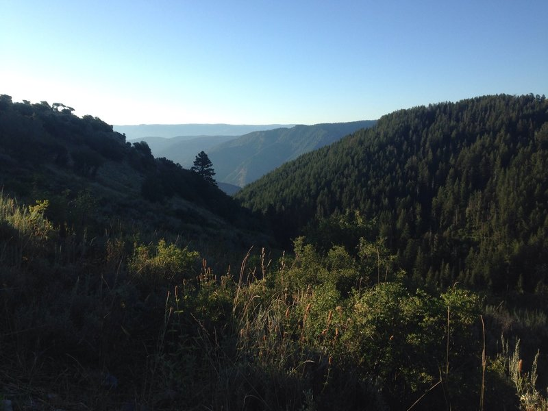 A view into Leatham Hollow and Blacksmith Fork Canyon from the Millville Canyon Road