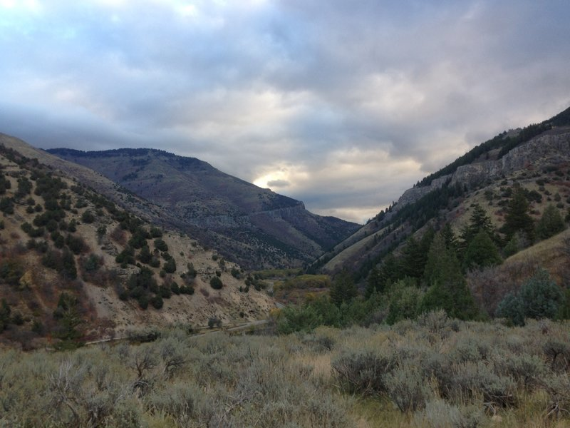 A view up Logan Canyon from the Mill Hollow Trail
