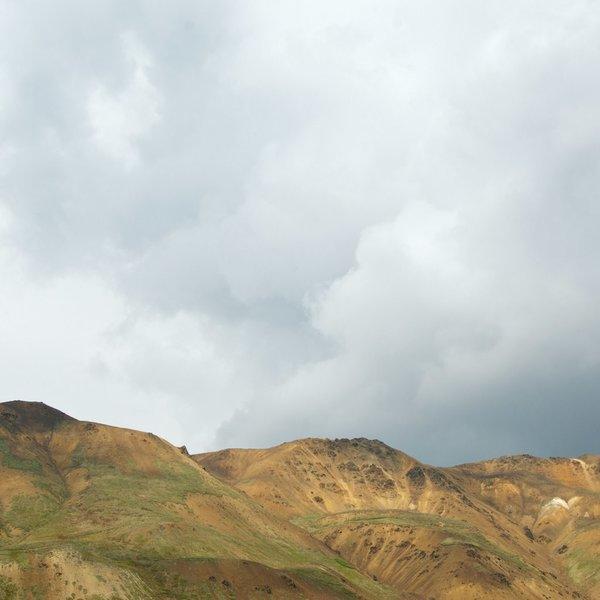 Denali Landscape (dry).