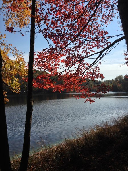 Lake Frank in the fall.