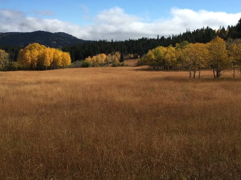 The fall brings out nice colors in and around the large meadow.