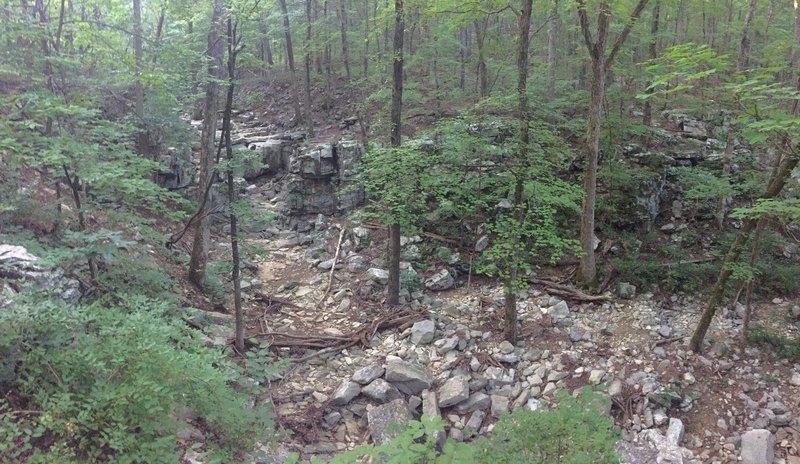 View of Fagan Creek.