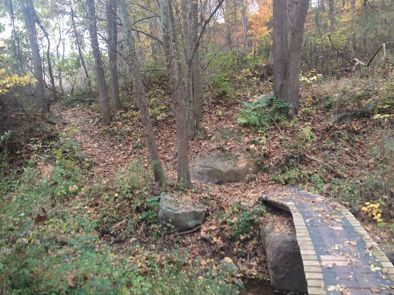 The first of many bridges on the Cisler Trail.