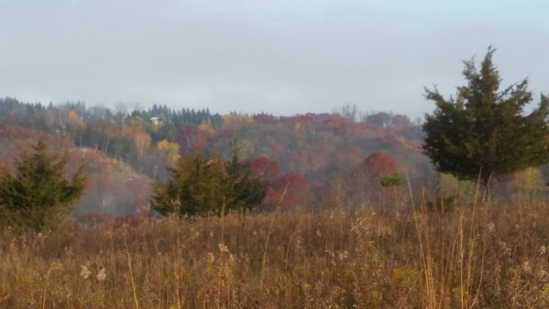 Beautiful fall colors and a light fog in the valley