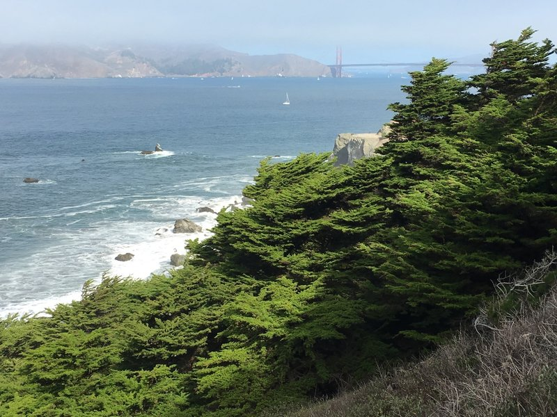 One of the many views of the Golden Gate
