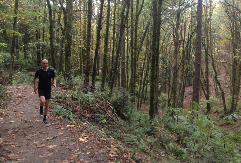 A runner jogs up the Birch Trail with a scenic ravine by his side.