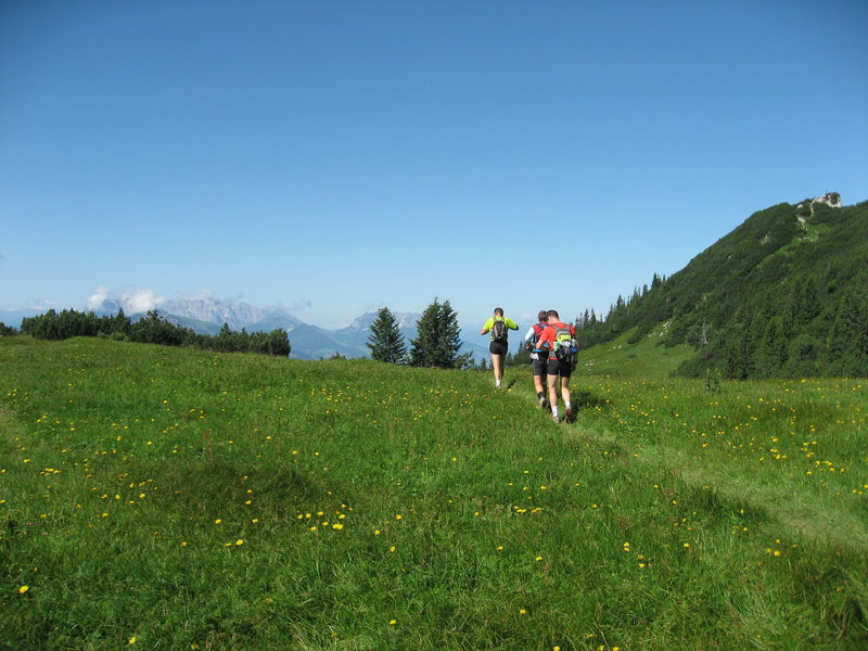 Hörndlwand meadow (60 miles).