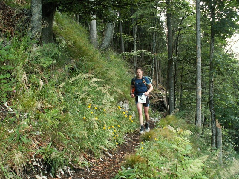 Along the Rauschberg mountain flank.