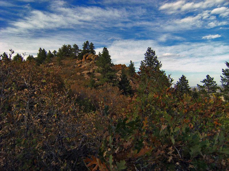 The summit of Carpenter Peak.