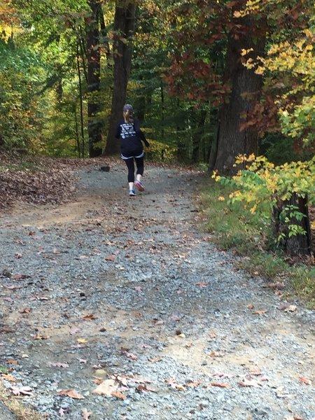 Upper end of Battle Branch Trail