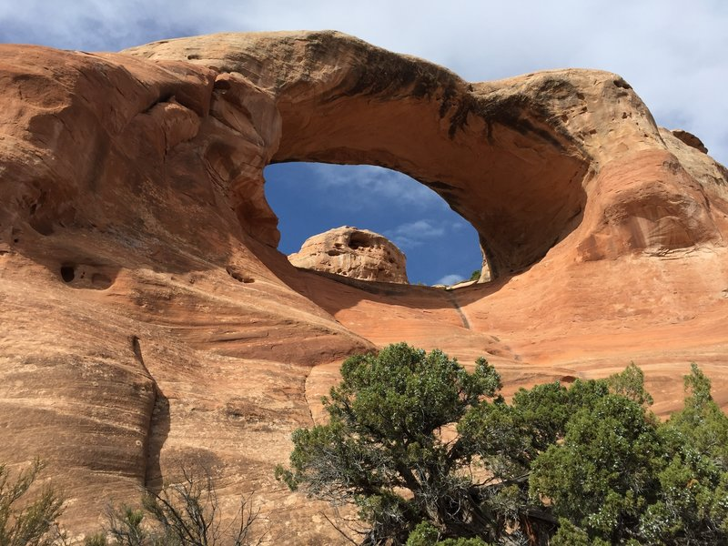 Cedar arch (or First Arch). The scramble goes up the middle.