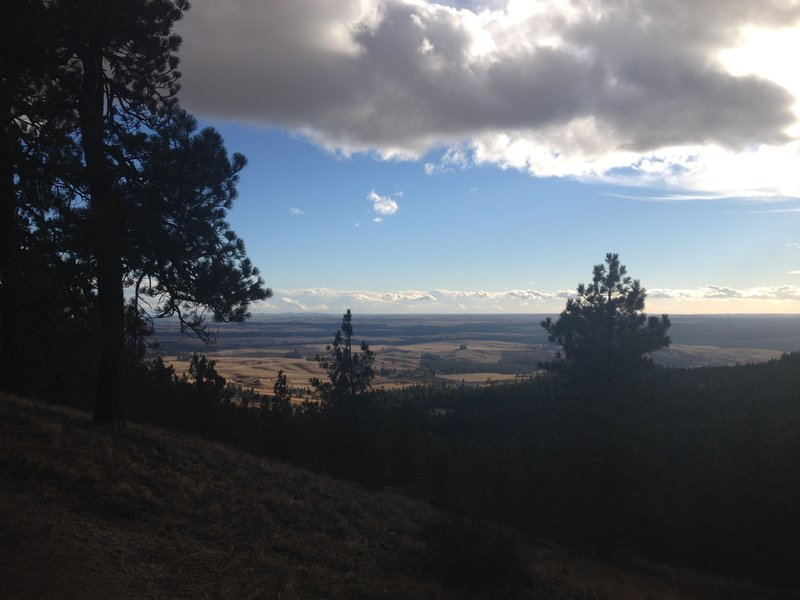 Great view of the Palouse Valley!