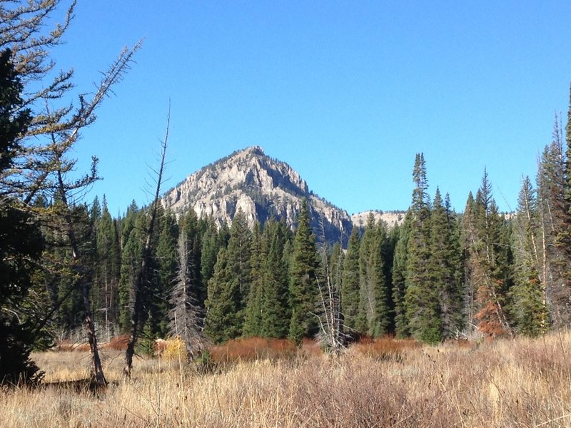 A last look at Mount Gog from a small cattle trail in White Pine Canyon.