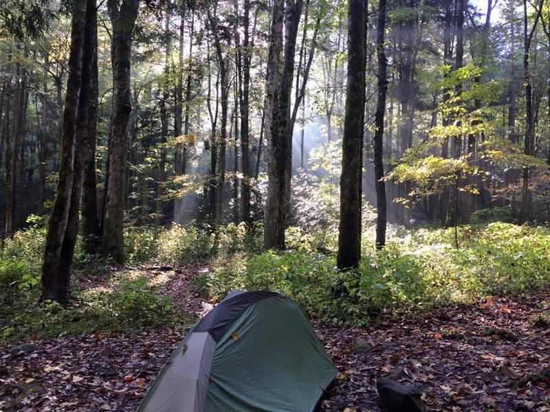 Walnut Bottom (Campsite 37)