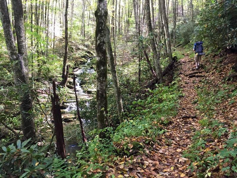 Hiking along Big Creek Trail.