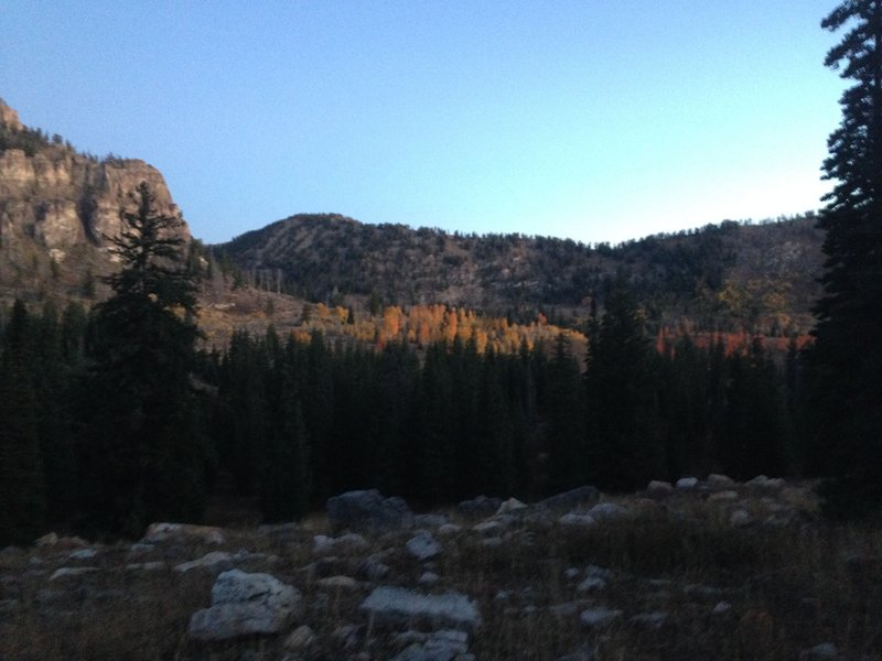 Some beautiful fall colors in White Pine Canyon (from afar)