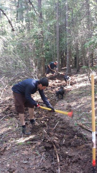 Scott Rulander building the Little John trail