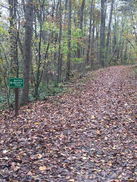 Connecting trail between Upper Trail portion and Lower Trail portion of Battle Branch Trail.