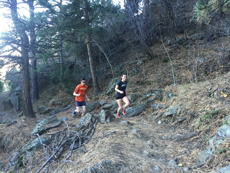 More rocks on Shorthorn!