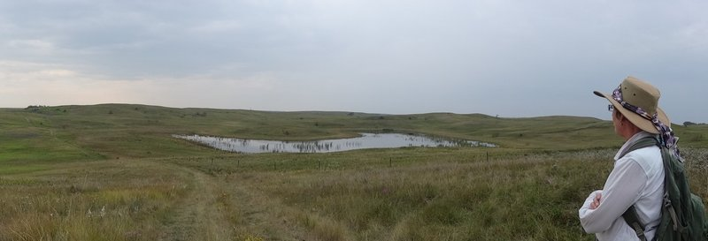 Rolling hills and wetlands.