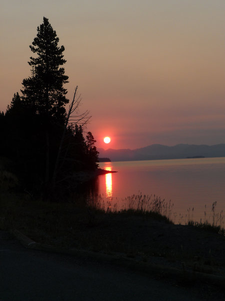 Sunrise along Yellowstone Lake.