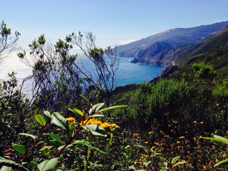Starting early on the trail, the views of the Pacific Ocean get pretty amazing.