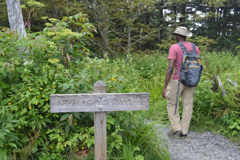 AT hiker crossing Clignman's Dome trail.