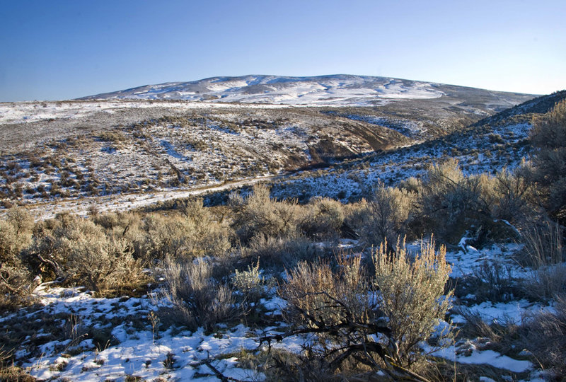 The winter view of Cowiche Mountain is impressive.