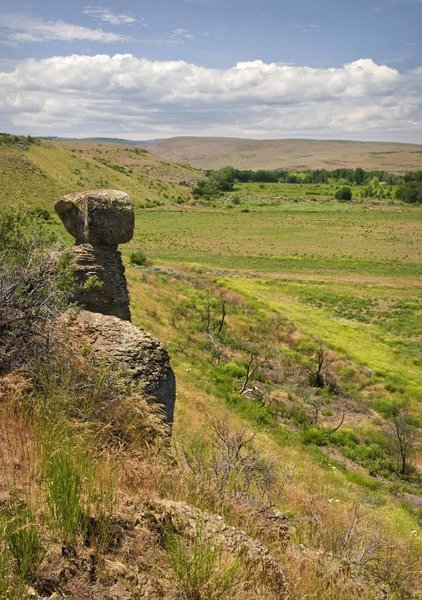 The Balanced Rock that gives the trail the name, looking out over the riparian meadow.