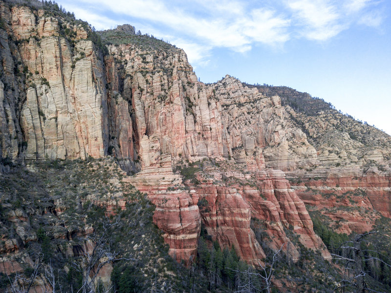 Looking back at the imposing sandstone cliffs of Oak Creek Canyon while on the North Wilson Trail.