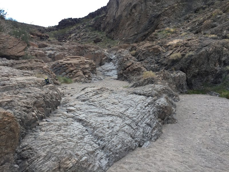 """First """"waterfall"""" on the 100 trail. Not even a scramble to get up."""