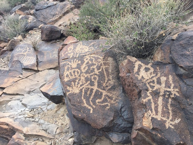 """Several of the literally hundreds of petroglyphs just above the third waterfall in """"Petroglyph Canyon."""""""