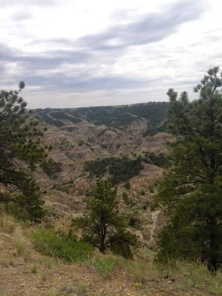 There are some lovely views from the Kinney Coulee trail.