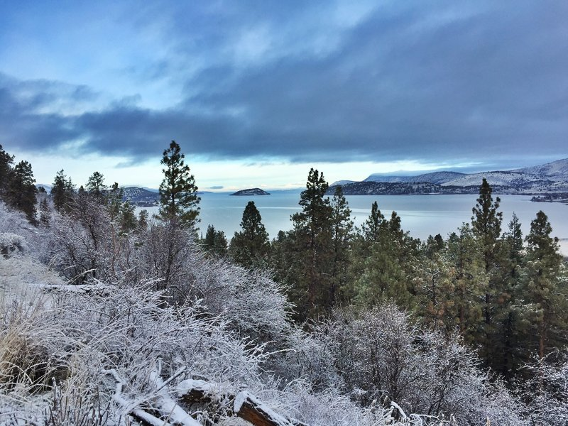 Overlooking Klamath Lake and Buck Island along the Klamath Ridgeview Trail during a heavy frost mid-November.