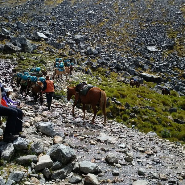 No cars out here - things move via pack animal while on the Salkantay Trail.  Here, it's propane.  The horses are not roped together, so give them lots of room.